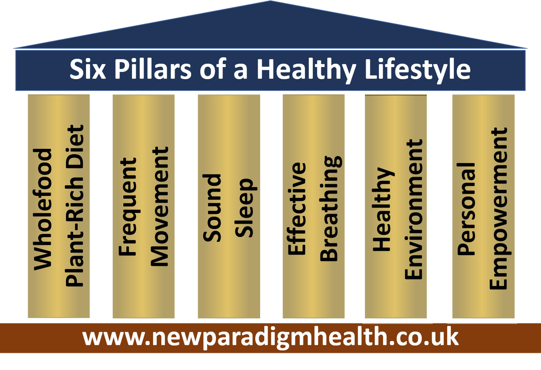 The Seven Pillars of a Healthy Lifestyle