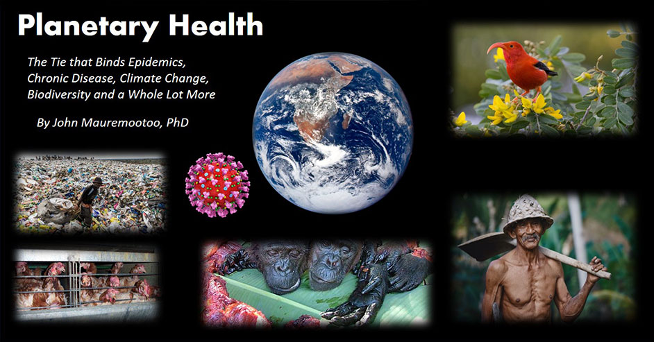 Planetary Health - The Tie that Binds Epidemics, Chronic Disease, Climate Change, Biodiversity and a Whole Lot More