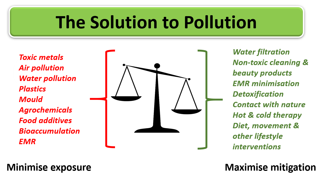 The Solution to Pollution